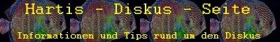 Informationen und Tips rund um den Diskus